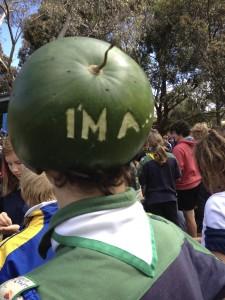 Melon helmet …..back